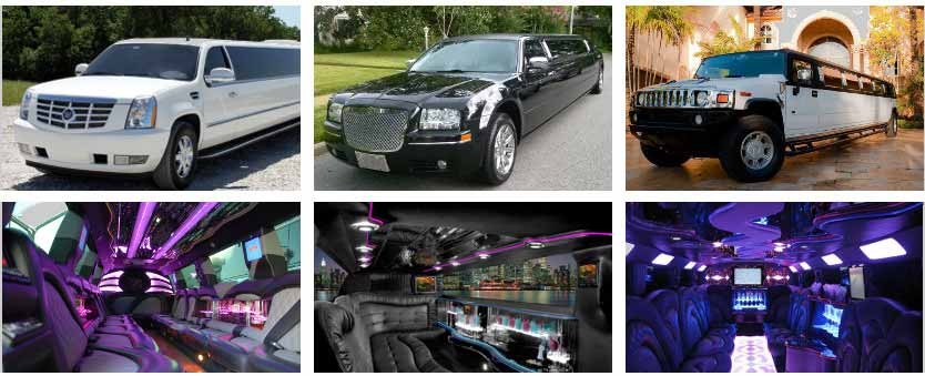 Wedding Transportation Party Bus Rental Cleveland